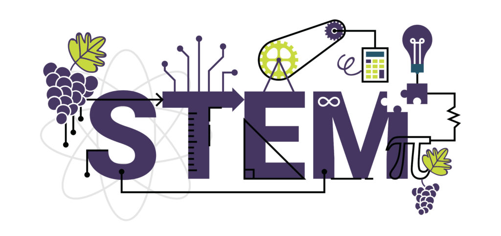 STEM activity sheets – learn with grapes!