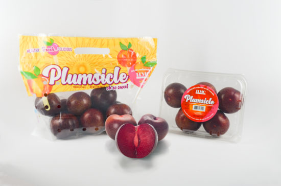Plumsicle™ proprietary plum or plumcot variety displayed in 2lb bag and 1lb clam packaging
